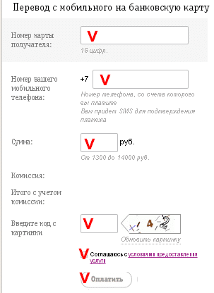 форма на сайте билайн