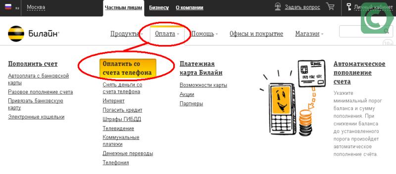 страница отправки на сайте билайн